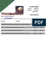 Comander 3105.pdf