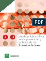 Guia_de_cuidados de ulceras arteriales.pdf