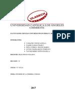 Informe de Economia II Ciclo Janella