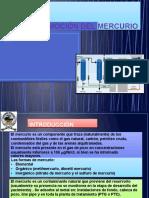 312583725-REMOCION-DEL-MERCURIO-pptx.doc