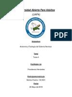 Tarea 4(Anatomia Y Fisiologia del S.N.-Maritza Paulino).docx