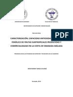 Caracterizacion, capacidad antioxidante y perfil fenólico de frutas subtropicales producidas y comercializadas en la costa de granada-malaga.pdf