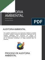 Procedimientos Para La Auditoria Ambiental