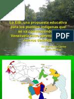 ponencia_puebla[1].pdf