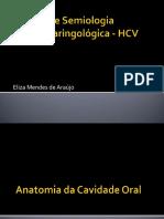 Anatomia e Fisiologia Cavidade Oral Anatomia e Fisiologia Cavidade Oral Anatomia e Fisiologia Cavidade Oral