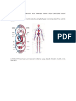 anatomi manusia.docx
