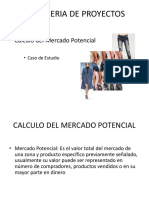 El Mercado Potencial.pdf