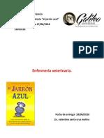 Ensayo El Jarron Azul