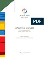 Evaluating Biofuels
