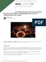 NotiReportaje Castañas en Peru 2015