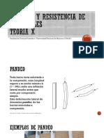 Tema X Pandeo