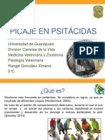 Seminario patologia.pptx