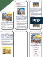 231989737-TRIPTICO-desastres-naturales.docx
