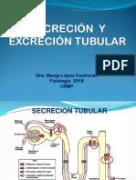 33. Secreción y Excreción Tubular 25 05 2018