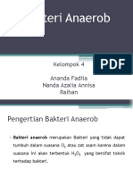 Bakteri Anaerob.pptx