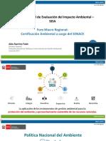 Sistema Nacional de Evalucion Del Impacto Ambiental SEIA Minam