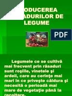 Producerea Rasadurilor de Legume.pps