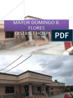 Mayor Domingo b Flores District Hospital