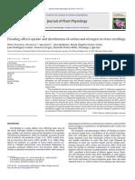 Inundaciones Afectan a La Captación y Distribución de Carbono y Nitrógeno en Las Plantas de Semillero de Cítricos