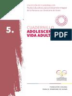 5. Cuadernillo Adolescencia y Vida Adulta Final JP