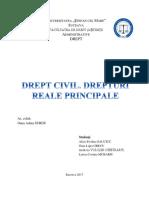 Drept Civil. Drepturi Reale Bun