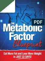 METABOLICFACTOR_BLUEPRINT.pdf