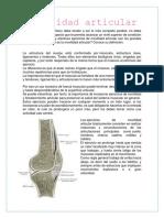Movilidad Articular Evaluacion Osea y Musculo