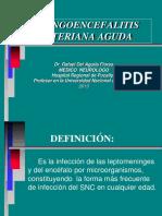 7- Mec Bacteriana Aguda.