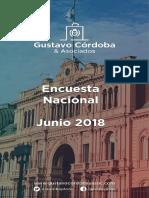Gustavo Cordoba Imagen de CFK Junio