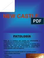 NEWCASTLE.ppt
