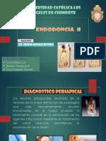 Diagnosticoperiapical EXpo