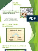 Reducción de Tamaño Oficial (1)