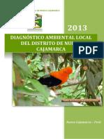 2.Diagnostico Ambiental Local-nc