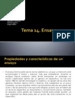 Presentacion Tema 14 Expresion Literaria