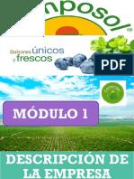 Diseño de Un Sistema de Gestión de Calidad Basado en La Norma Iso9001 2015 Aplicado a La Empresa Camposol (1)