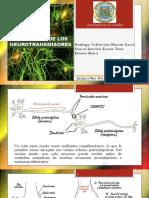 neurotrasmisores-4.pptx