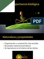 Virus e Importancia Biológica