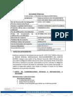 Informe Pericial Caso1zamora-Banco de Loja 0081