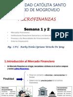 Diapositivas de Microfinanzas (2)