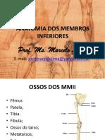 1. Aula de Anatomia Dos Membros Inferiores.2016.1