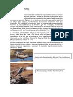 AMBIENTE BIOLOGICO.docx