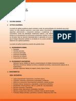 temario VILLAREAL.pdf