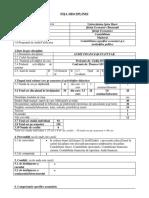 15 Audit Financiar Statutar 2015
