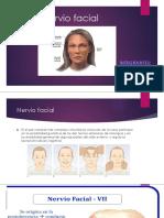 Nervio facial EXPO.pptx