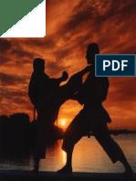 Karate Presentacion