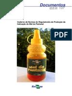137 - Caderno de Normas Do Regulamento de Produção ...