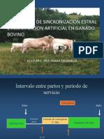 1082571 IA Bovinos