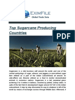 Top Sugarcane Exporters Countries