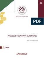 Procesos cognitivos superiores.pptx