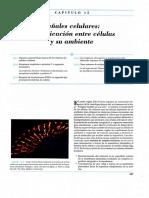 78672835-Capitulo-15-BIOCEL.pdf